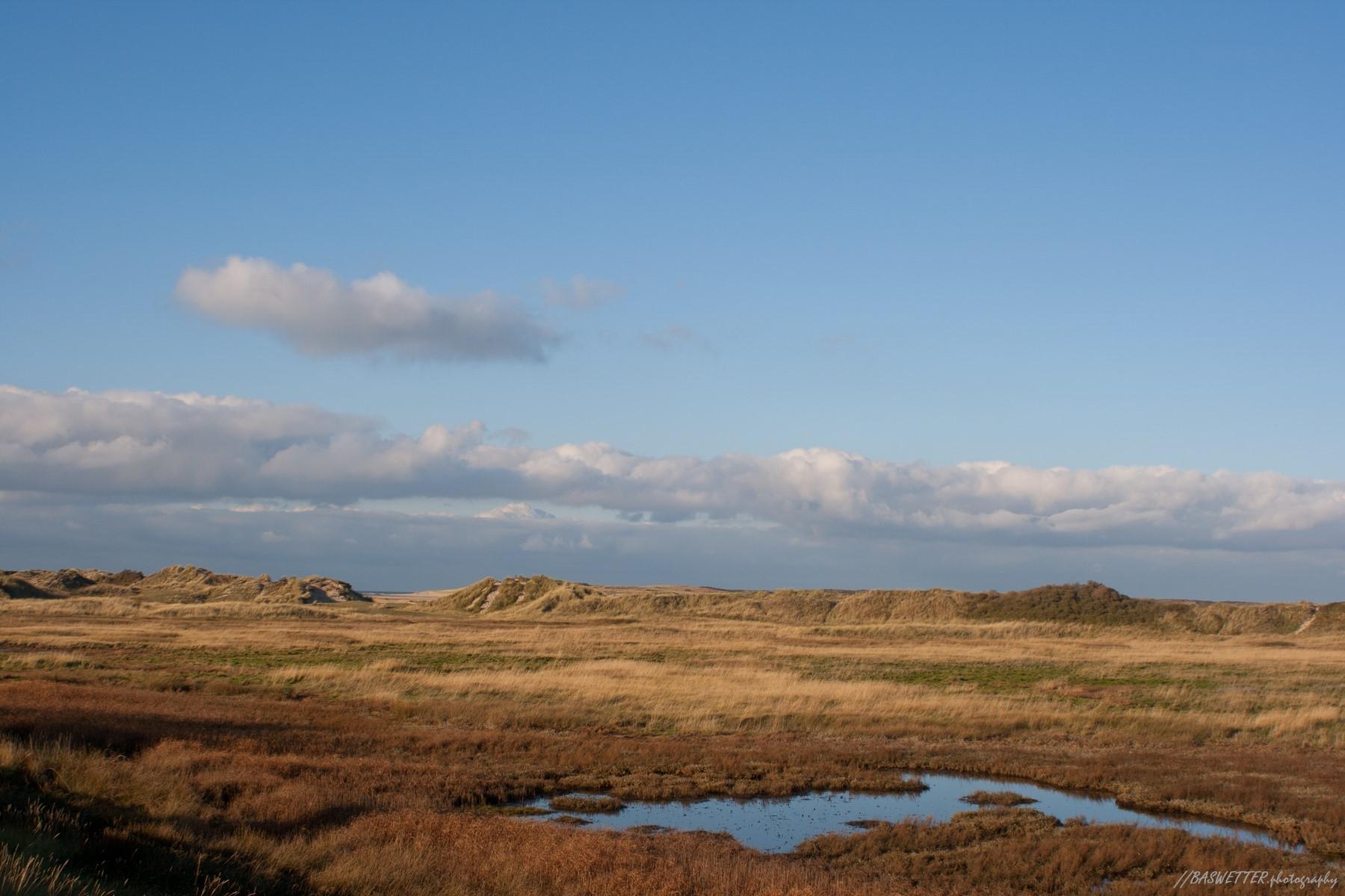 Duinen bij de Slufter op waddeneiland Texel