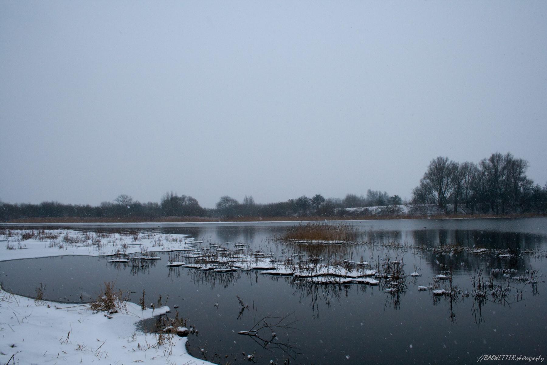 Winterlandschap in de uiterwaarden van Wageningen