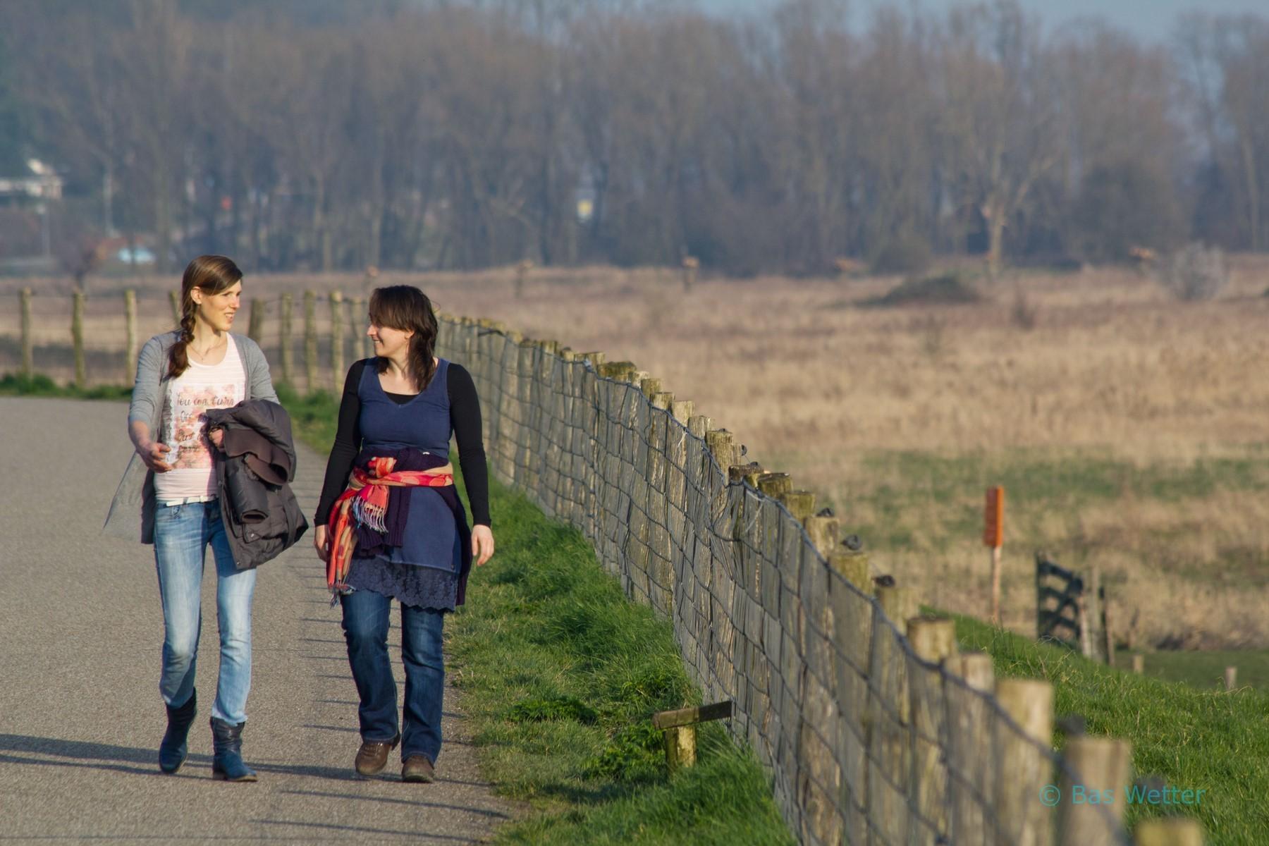 Wandelen over de Grebbedijk in de zon