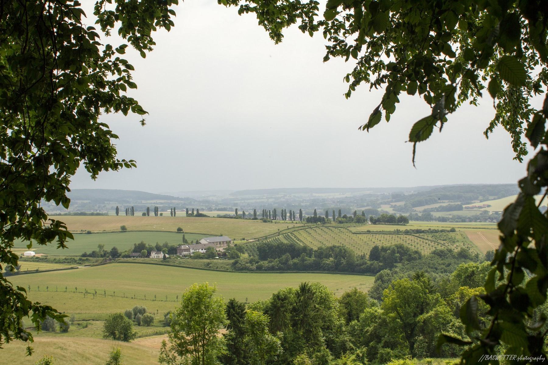 Bijna Italiaans landschap in Zuid Limburg