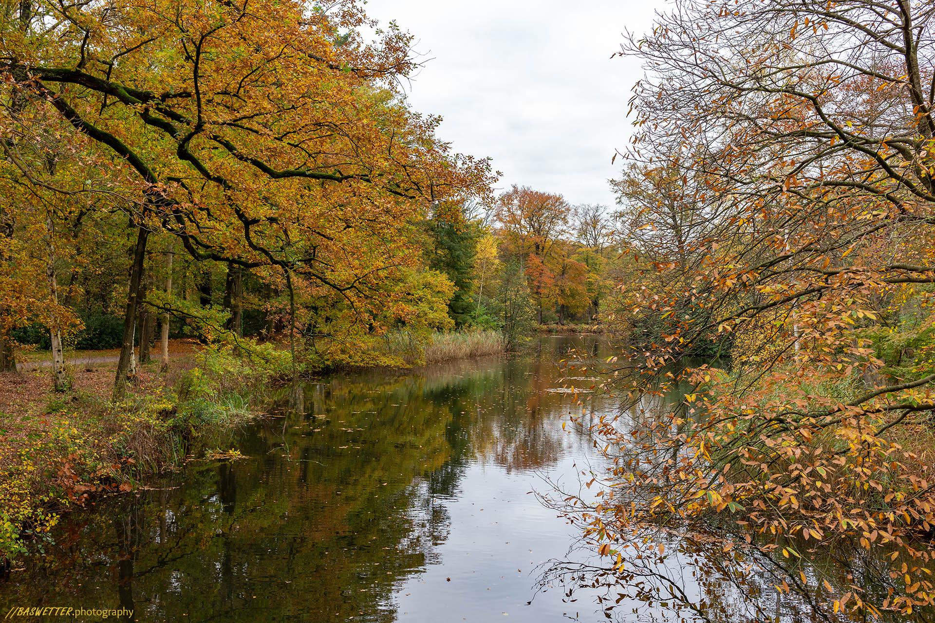 Herfst op de landgoederen rond Bussum